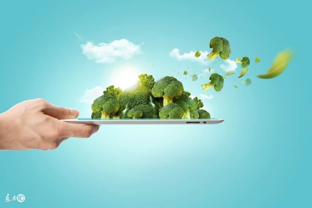 有機農業、綠色農業、生態農業它們其實都一樣?