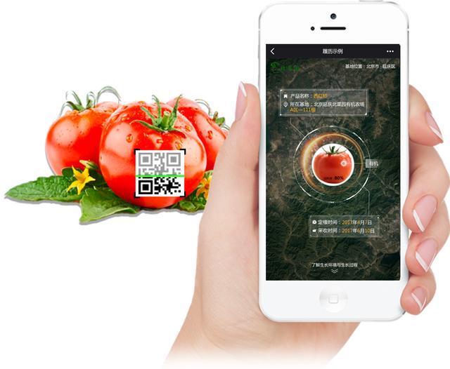 農業+大數據:將顛覆傳統農業,讓農場智慧化互聯網化