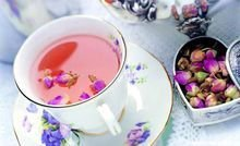 平阴玫瑰花茶