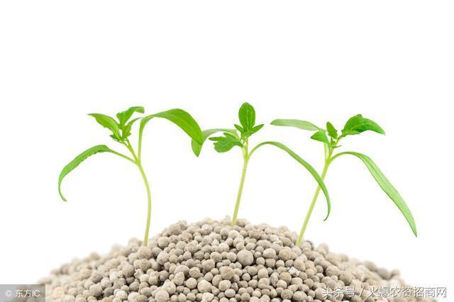 真肥料賣不動,假肥料卻暢銷這是為何?