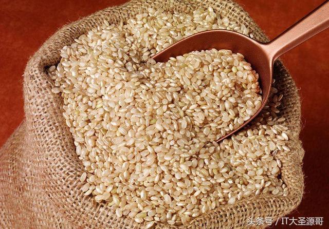 大米、小米、紅米、紫米、黑米、糯米、薏米、糙米的區別和功效