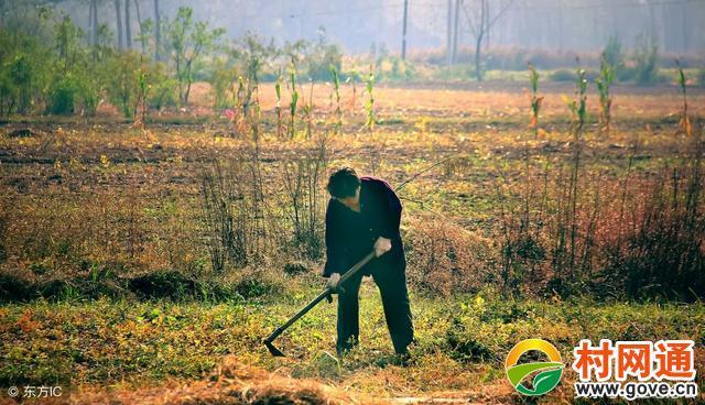 2018農村土地確權后,如果老人去世,子女可以繼承土地嗎?