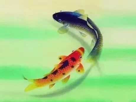 終于找全了:蝴蝶效應、鱷魚法則、鲇魚效應(值得收藏)