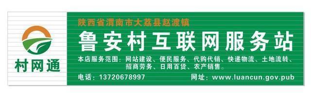 祝賀魯安村互聯網服務站正式營業!
