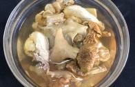 【舅妈厨房】姬松茸花胶土鸡汤