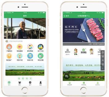 互聯網+生態畜牧業創新升級,智慧牧業引領未來