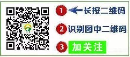 mmexport1534046687024.jpg
