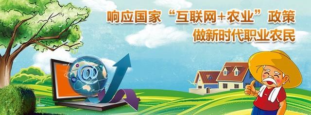 中國鄉村振興計劃 促進鄉村建設美好未來
