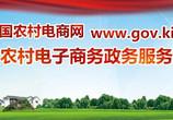 农村电商政务网推广链接