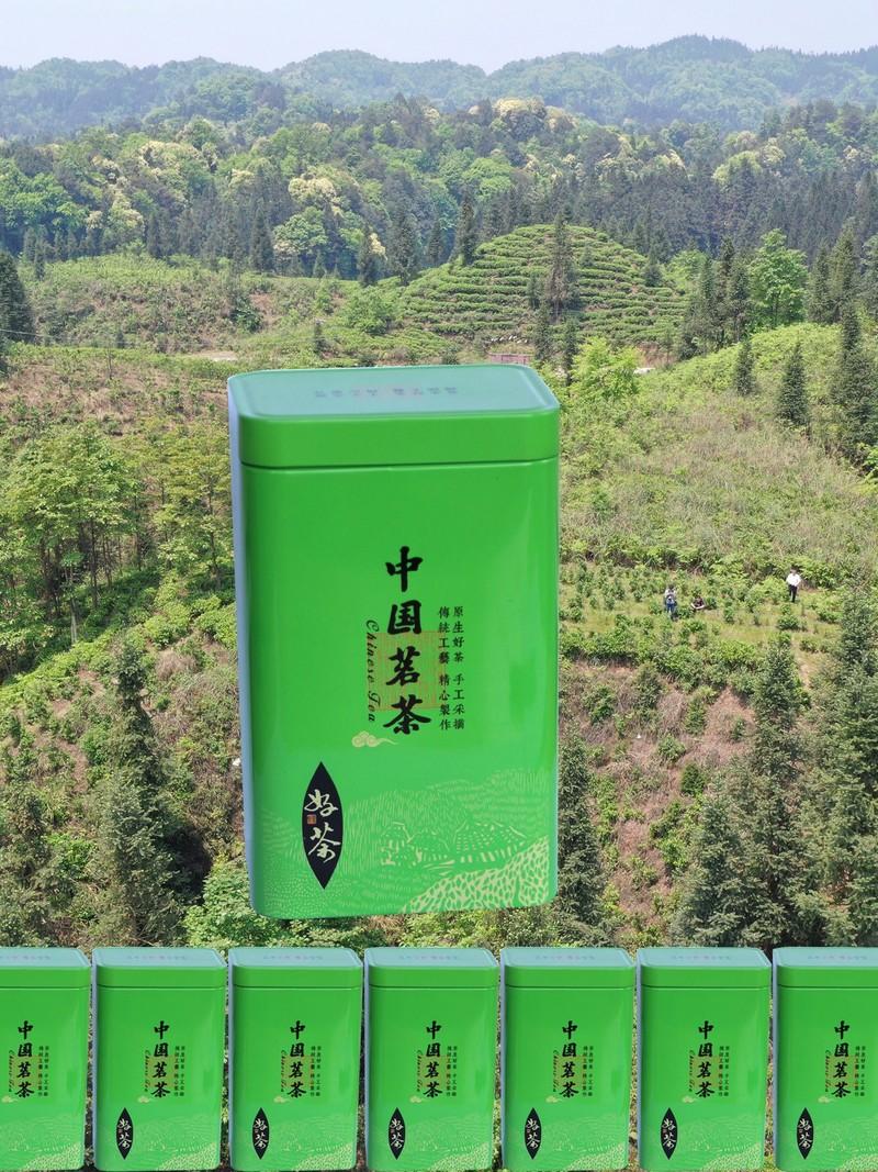 竹叶青铝罐包装展示图.jpg